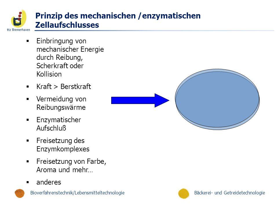 Bäckerei- und GetreidetechnologieBioverfahrenstechnik/Lebensmitteltechnologie Prinzip des mechanischen /enzymatischen Zellaufschlusses  Einbringung v