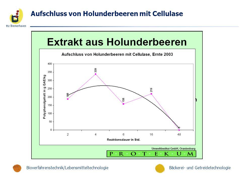 Bäckerei- und GetreidetechnologieBioverfahrenstechnik/Lebensmitteltechnologie Aufschluss von Holunderbeeren mit Cellulase