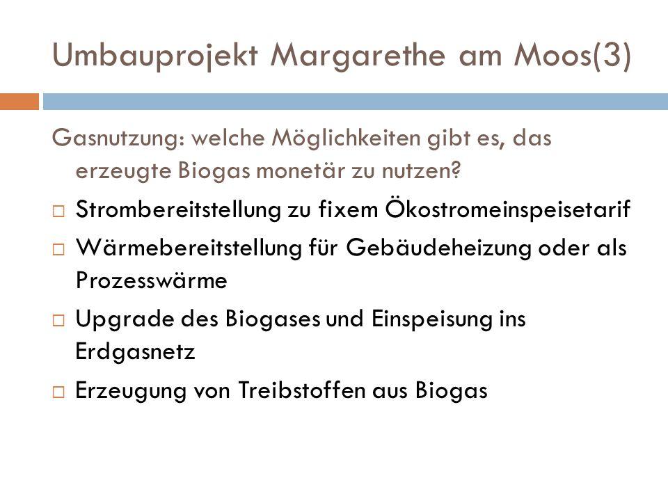 Umbauprojekt Margarethe am Moos(3) Gasnutzung: welche Möglichkeiten gibt es, das erzeugte Biogas monetär zu nutzen?  Strombereitstellung zu fixem Öko