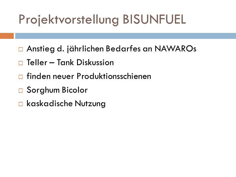 Projektvorstellung BISUNFUEL  Anstieg d. jährlichen Bedarfes an NAWAROs  Teller – Tank Diskussion  finden neuer Produktionsschienen  Sorghum Bicol