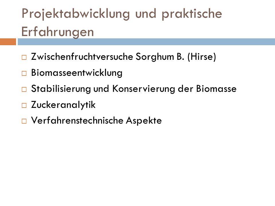 Projektabwicklung und praktische Erfahrungen  Zwischenfruchtversuche Sorghum B. (Hirse)  Biomasseentwicklung  Stabilisierung und Konservierung der