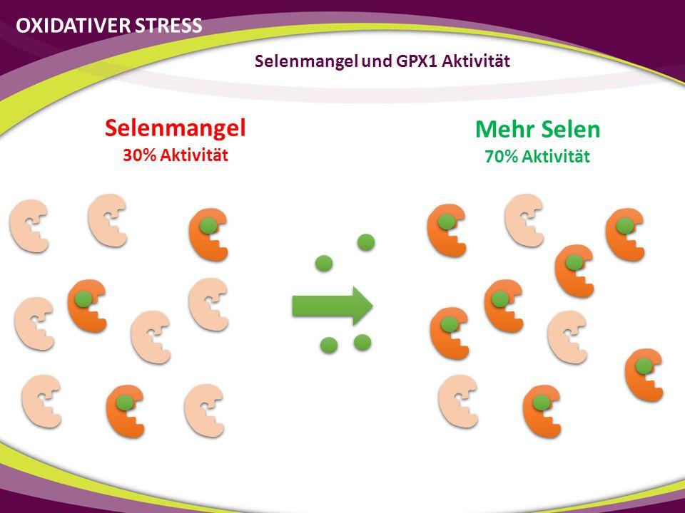 Mehr Selen 70% Aktivität OXIDATIVER STRESS Selenmangel und GPX1 Aktivität Selenmangel 30% Aktivität
