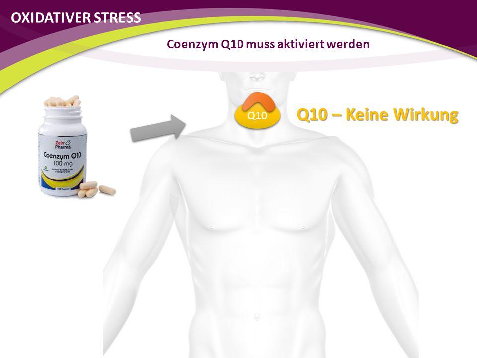 Coenzym Q10 muss aktiviert werden Q10 Q10 – Keine Wirkung OXIDATIVER STRESS