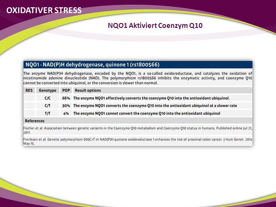 NQO1 Aktiviert Coenzym Q10 OXIDATIVER STRESS
