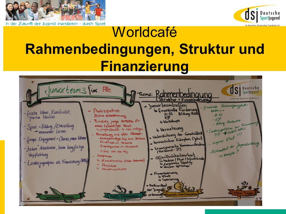 Worldcafé Rahmenbedingungen, Struktur und Finanzierung 17