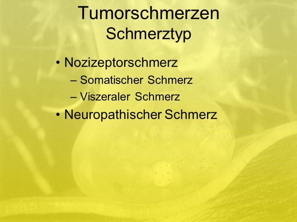 Tumorschmerzen Schmerztyp Nozizeptorschmerz – Somatischer Schmerz – Viszeraler Schmerz Neuropathischer Schmerz