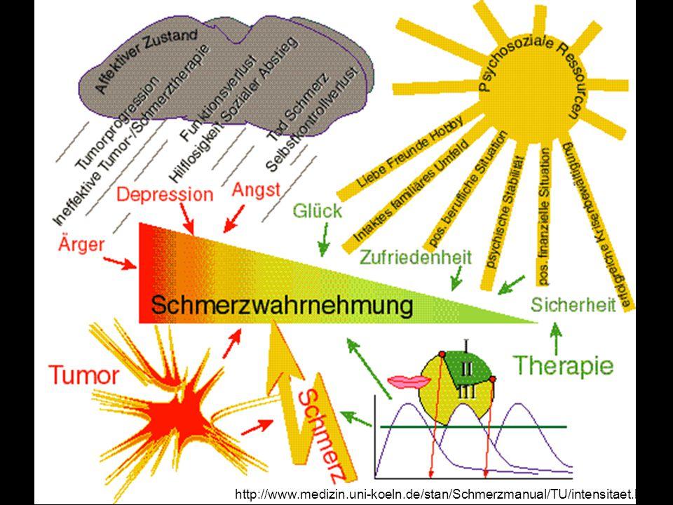 http://www.medizin.uni-koeln.de/stan/Schmerzmanual/TU/intensitaet.html
