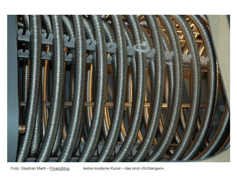 Foto: Stephan Marti – Finanzblog keine moderne Kunst – das sind «Schlangen»Finanzblog