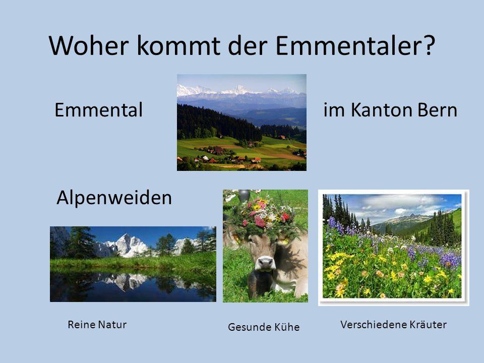 Woher kommt der Emmentaler? Emmental Alpenweiden Reine Natur Gesunde Kühe Verschiedene Kräuter im Kanton Bern