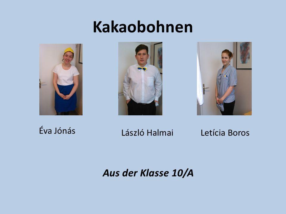 Kakaobohnen Éva Jónás László HalmaiLetícia Boros Aus der Klasse 10/A