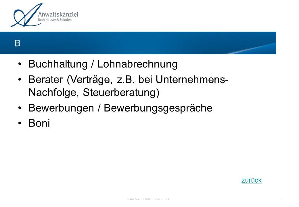 Buchhaltung / Lohnabrechnung Berater (Verträge, z.B. bei Unternehmens- Nachfolge, Steuerberatung) Bewerbungen / Bewerbungsgespräche Boni B zurück © AN