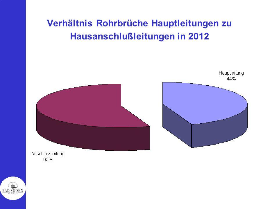 Verhältnis Rohrbrüche Hauptleitungen zu Hausanschlußleitungen in 2012