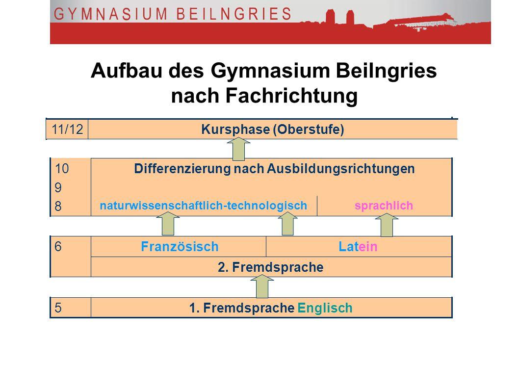 Aufbau des Gymnasium Beilngries nach Fachrichtung Kursphase (Oberstufe)11/12 Differenzierung nach Ausbildungsrichtungen sprachlichnaturwissenschaftlic