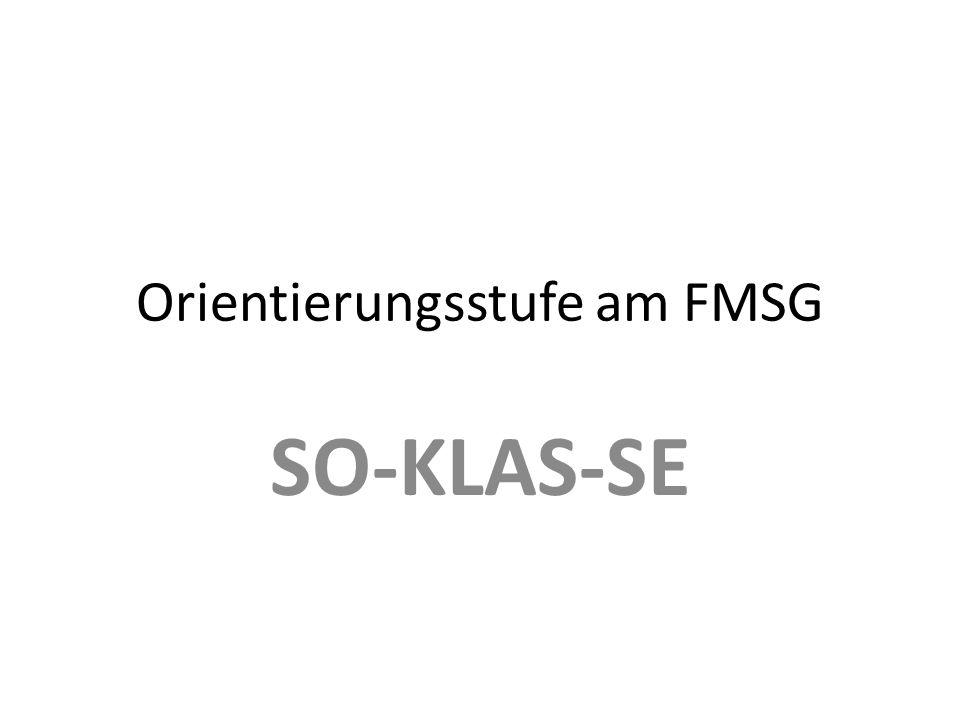 Orientierungsstufe am FMSG SO-KLAS-SE