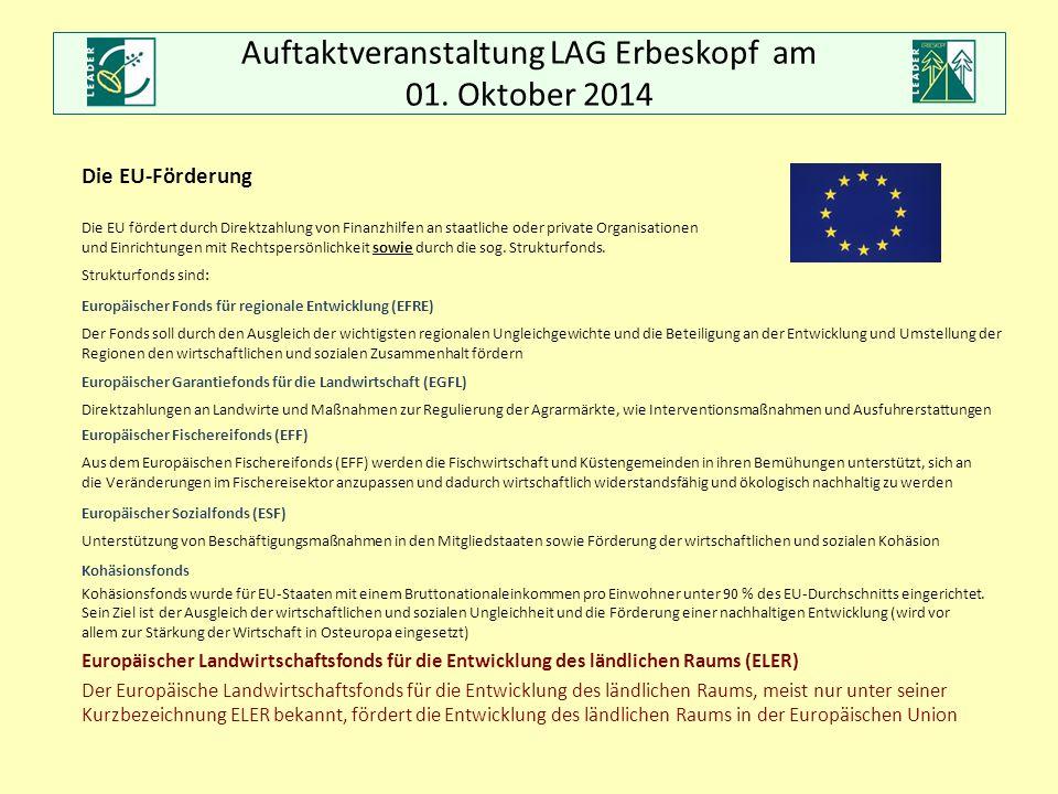Auftaktveranstaltung LAG Erbeskopf am 01. Oktober 2014 Die EU-Förderung Die EU fördert durch Direktzahlung von Finanzhilfen an staatliche oder private