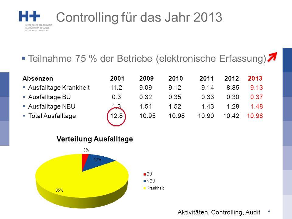 5 Controlling für das Jahr 2013 Aktivitäten, Controlling, Audit BereichAnz.