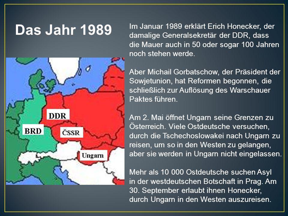 Im Januar 1989 erklärt Erich Honecker, der damalige Generalsekretär der DDR, dass die Mauer auch in 50 oder sogar 100 Jahren noch stehen werde. Aber M