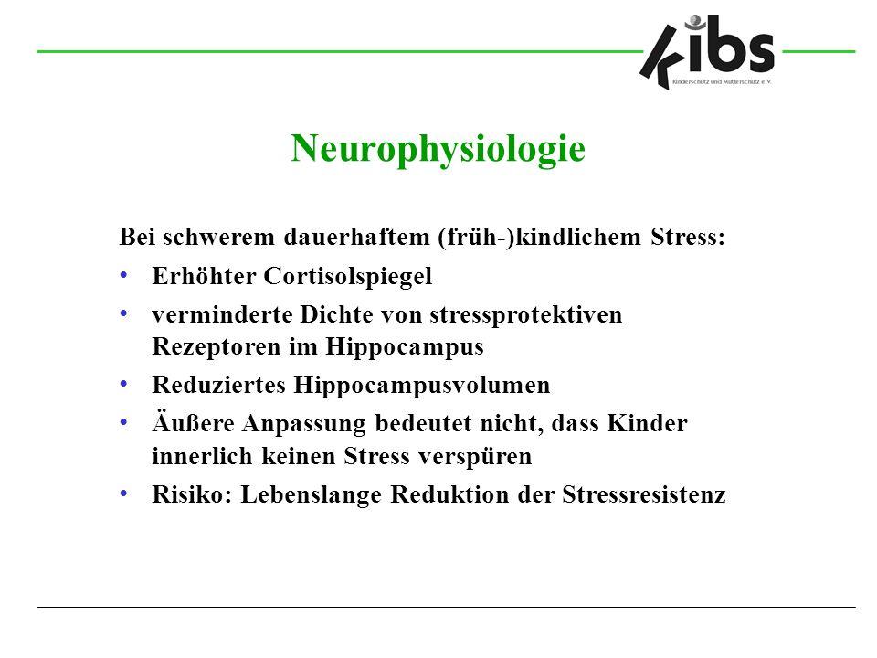 Neurophysiologie Bei schwerem dauerhaftem (früh-)kindlichem Stress: Erhöhter Cortisolspiegel verminderte Dichte von stressprotektiven Rezeptoren im Hi