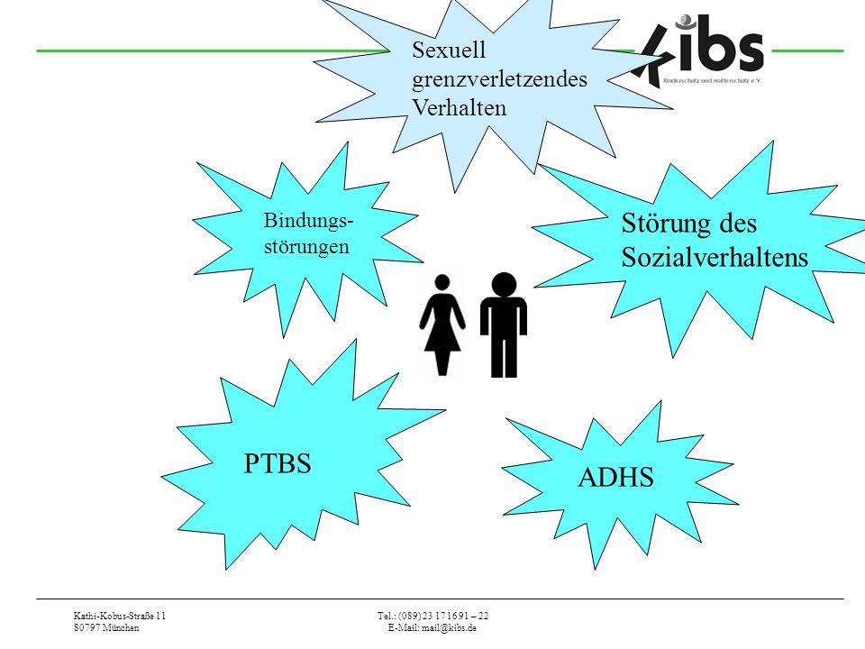 Kathi-Kobus-Straße 11 80797 München Tel.: (089) 23 17 16 91 – 22 E-Mail: mail@kibs.de PTBS Störung des Sozialverhaltens ADHS Bindungs- störungen Sexue