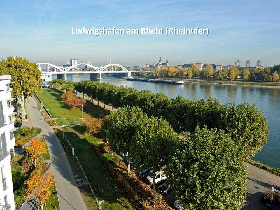 Ludwigshafen am Rhein (Walzmühle)