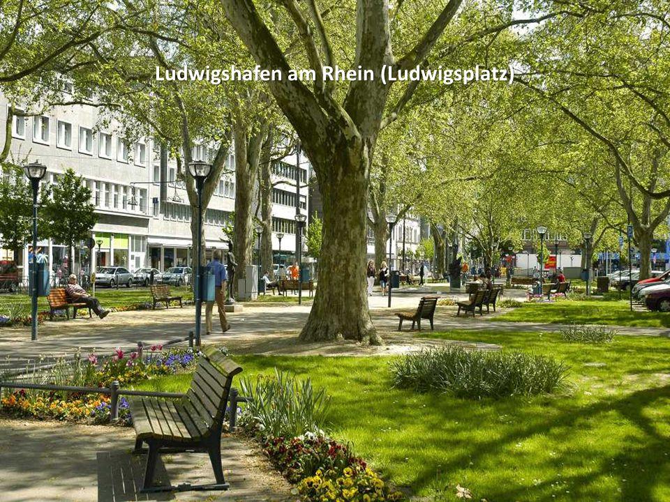 Ludwigshafen am Rhein (Ebertpark)