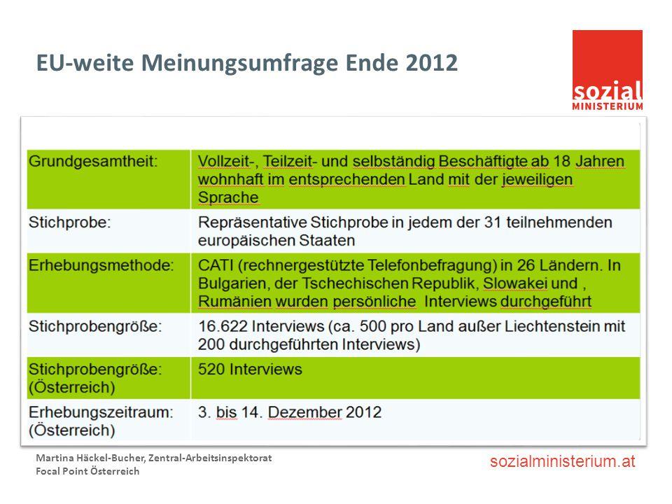 sozialministerium.at EU-weite Meinungsumfrage Ende 2012 Martina Häckel-Bucher, Zentral-Arbeitsinspektorat Focal Point Österreich