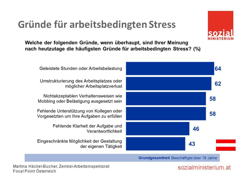 sozialministerium.at Gründe für arbeitsbedingten Stress Martina Häckel-Bucher, Zentral-Arbeitsinspektorat Focal Point Österreich
