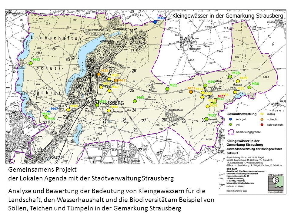 Gemeinsamens Projekt der Lokalen Agenda mit der Stadtverwaltung Strausberg Analyse und Bewertung der Bedeutung von Kleingewässern für die Landschaft,