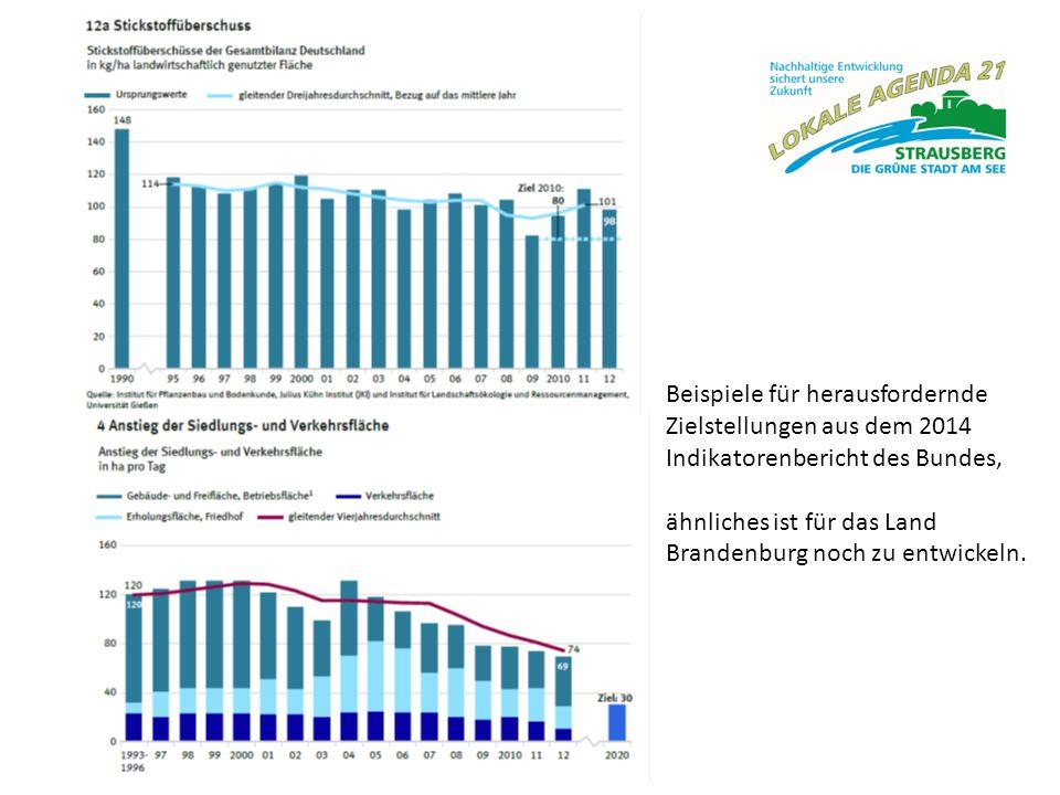 """Nachhaltigkeit messen meint Ziele definieren Indikatoren festlegen Erfolgskontrolle """"Lokale Agenda Strausberg 2020 Programm für eine nachhaltige zukunftsfähige Entwicklung Leitbild (Visionen) Handlungsfelder (Aktionen) Indikatoren (Kontrolle)"""