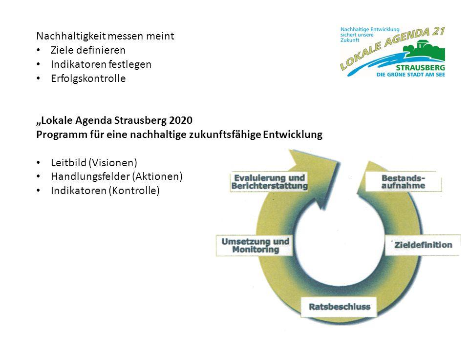 """Nachhaltigkeit messen meint Ziele definieren Indikatoren festlegen Erfolgskontrolle """"Lokale Agenda Strausberg 2020 Programm für eine nachhaltige zukun"""