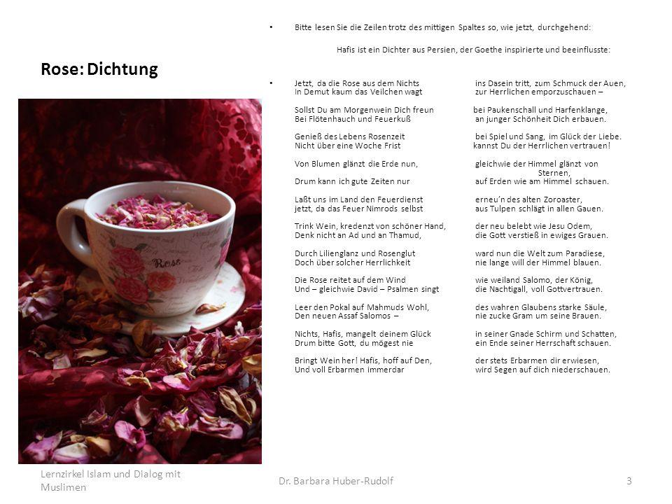 Rose: Dichtung Bitte lesen Sie die Zeilen trotz des mittigen Spaltes so, wie jetzt, durchgehend: Hafis ist ein Dichter aus Persien, der Goethe inspiri
