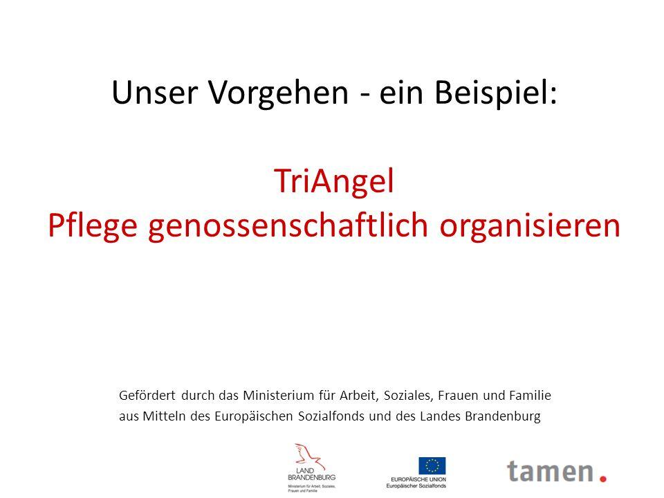 Unser Vorgehen - ein Beispiel: TriAngel Pflege genossenschaftlich organisieren Gefördert durch das Ministerium für Arbeit, Soziales, Frauen und Famili