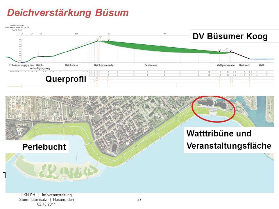 29 DV Büsumer Koog Tourismuseinrichtungen – die Vision Querprofil Perlebucht Watttribüne und Veranstaltungsfläche LKN-SH | Infoveranstaltung Sturmflut