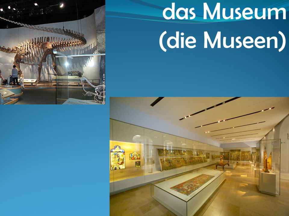 das Museum (die Museen)
