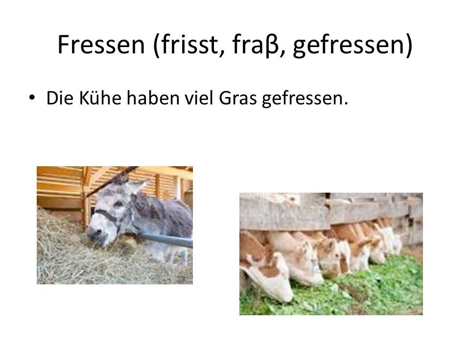 Fressen (frisst, fraβ, gefressen) Die Kühe haben viel Gras gefressen.