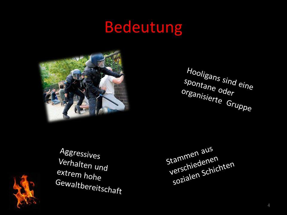 Bedeutung 4 Hooligans sind eine spontane oder organisierte Gruppe Aggressives Verhalten und extrem hohe Gewaltbereitschaft Stammen aus verschiedenen s