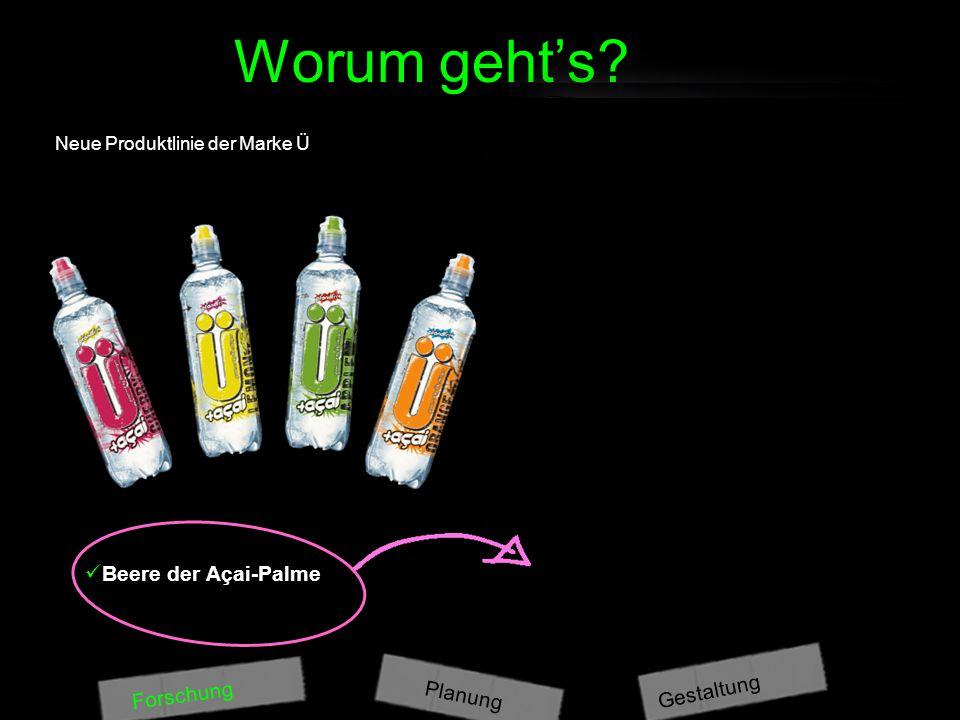 Worum geht's? Forschung Was ist drin? Natürliches Mineralwasser Fruktose Kohlensäure Säuerungsmittel Citronensäure natürliches Aroma Magnesiumcarbonat
