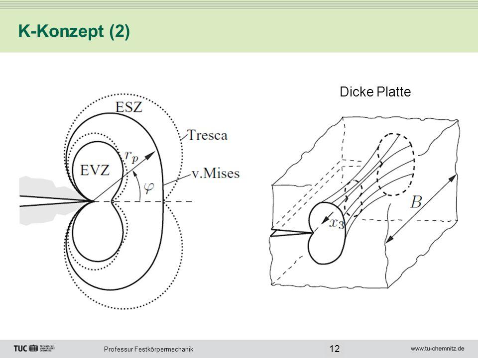 Professur Festkörpermechanik K-Konzept (2) 12 Dicke Platte