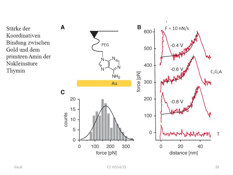 PEG Stärke der Koordinativen Bindung zwischen Gold und dem primären Amin der Nukleinsäure Thymin Au C,G,A T F ≈ 10 nN/s. Gaub26E1 WS14/15