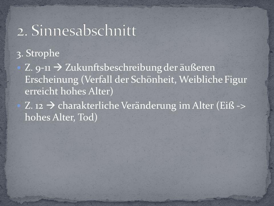 3.Strophe Z.