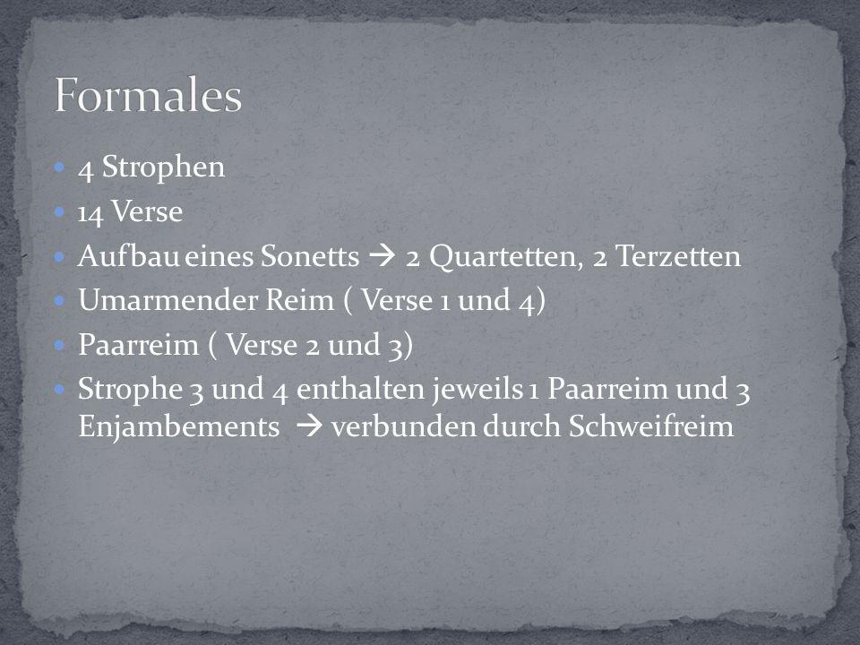 4 Strophen 14 Verse Aufbau eines Sonetts  2 Quartetten, 2 Terzetten Umarmender Reim ( Verse 1 und 4) Paarreim ( Verse 2 und 3) Strophe 3 und 4 enthalten jeweils 1 Paarreim und 3 Enjambements  verbunden durch Schweifreim
