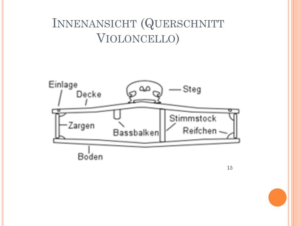I NNENANSICHT (Q UERSCHNITT V IOLONCELLO ) 15