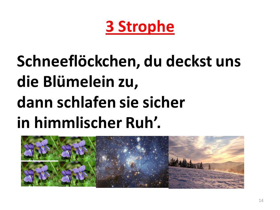 3 Strophe Schneeflöckchen, du deckst uns die Blümelein zu, dann schlafen sie sicher in himmlischer Ruh'. 14