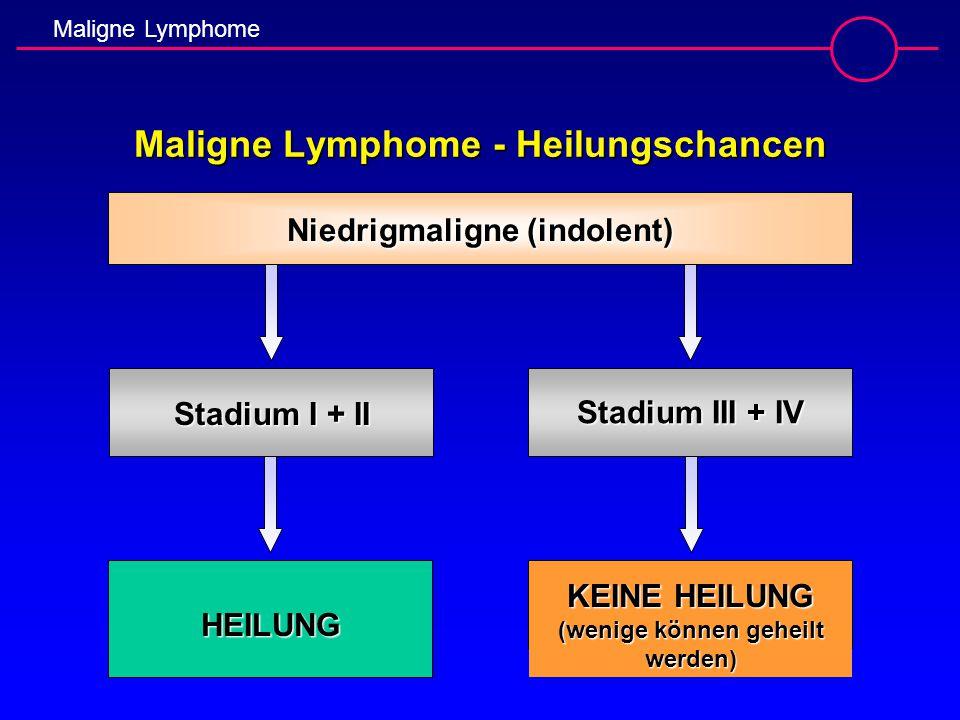 Maligne Lymphome Maligne Lymphome - Heilungschancen Niedrigmaligne (indolent) Stadium I + II Stadium III + IV HEILUNG KEINE HEILUNG (wenige können geh