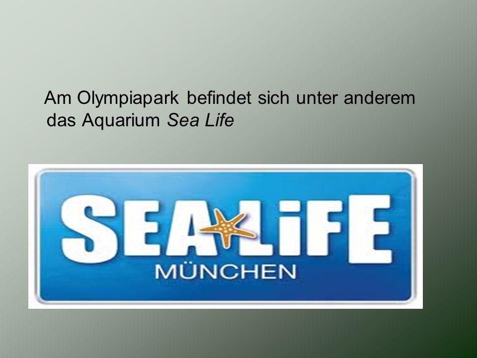 Am Olympiapark befindet sich unter anderem das Aquarium Sea Life