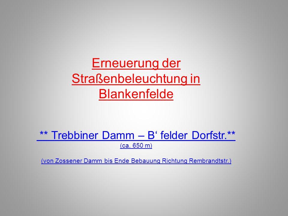 Erneuerung der Straßenbeleuchtung in Blankenfelde ** Trebbiner Damm – B' felder Dorfstr.** (ca. 650 m) (von Zossener Damm bis Ende Bebauung Richtung R