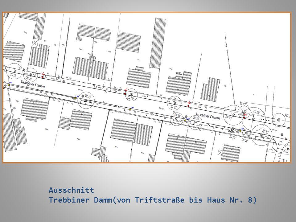 Ausschnitt Trebbiner Damm(von Triftstraße bis Haus Nr. 8)