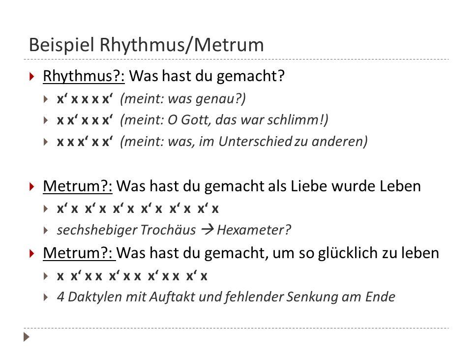 Beispiel Rhythmus/Metrum  Rhythmus?: Was hast du gemacht?  x' x x x x' (meint: was genau?)  x x' x x x' (meint: O Gott, das war schlimm!)  x x x'
