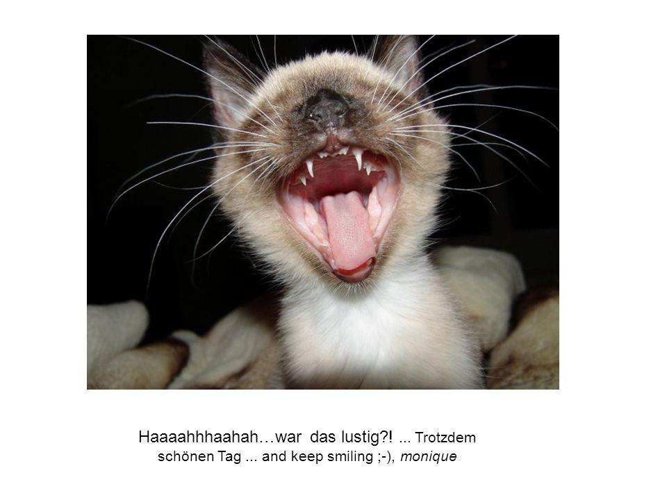 Haaaahhhaahah…war das lustig?!... Trotzdem schönen Tag... and keep smiling ;-), monique