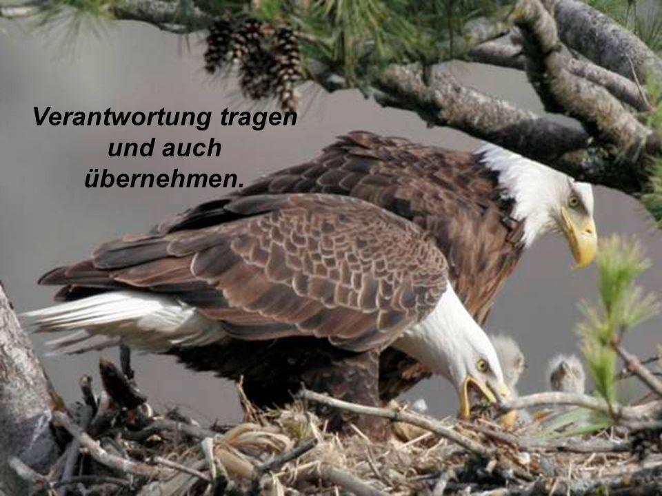 verteilt durch www.funmail2u.dewww.funmail2u.de Mächtig und kraftvoll, anerkennen, das Mächtige sehen.